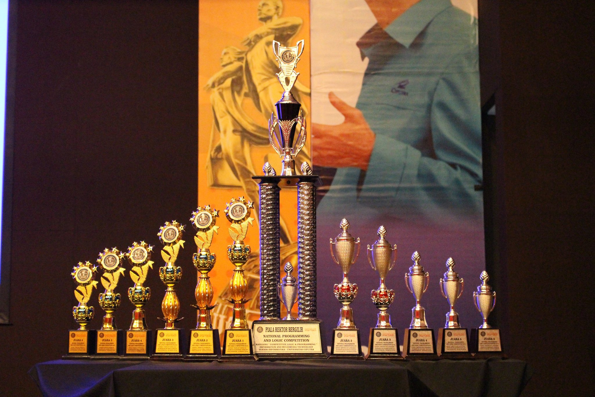 NPLC 2016 Trophy